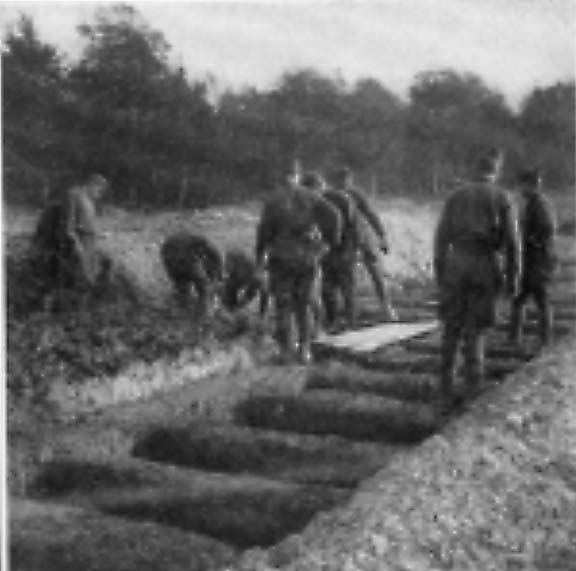 Brest Pontanezen Camp Tents France WW1 Photo